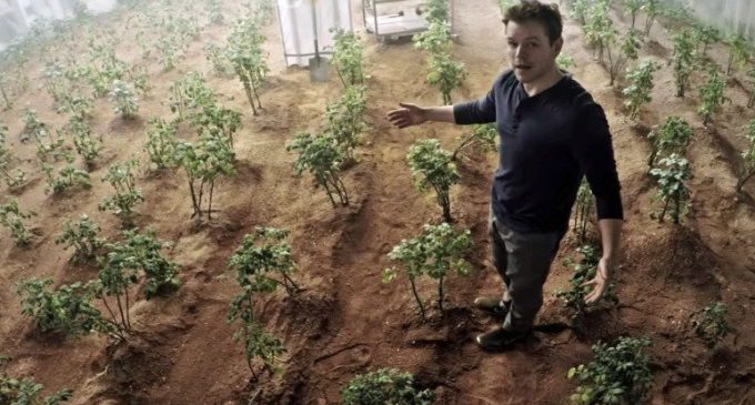 Growing Potatoes on Mars Could Actually Work